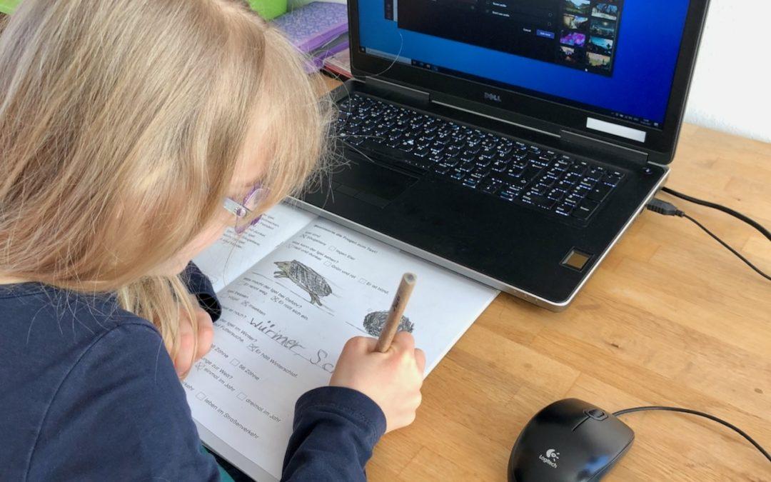 Exzellentes Homeschooling an der Montessori-Schule Idstein